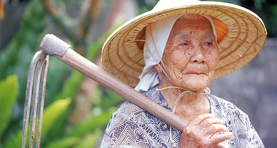 Long living Okinawa woman farming