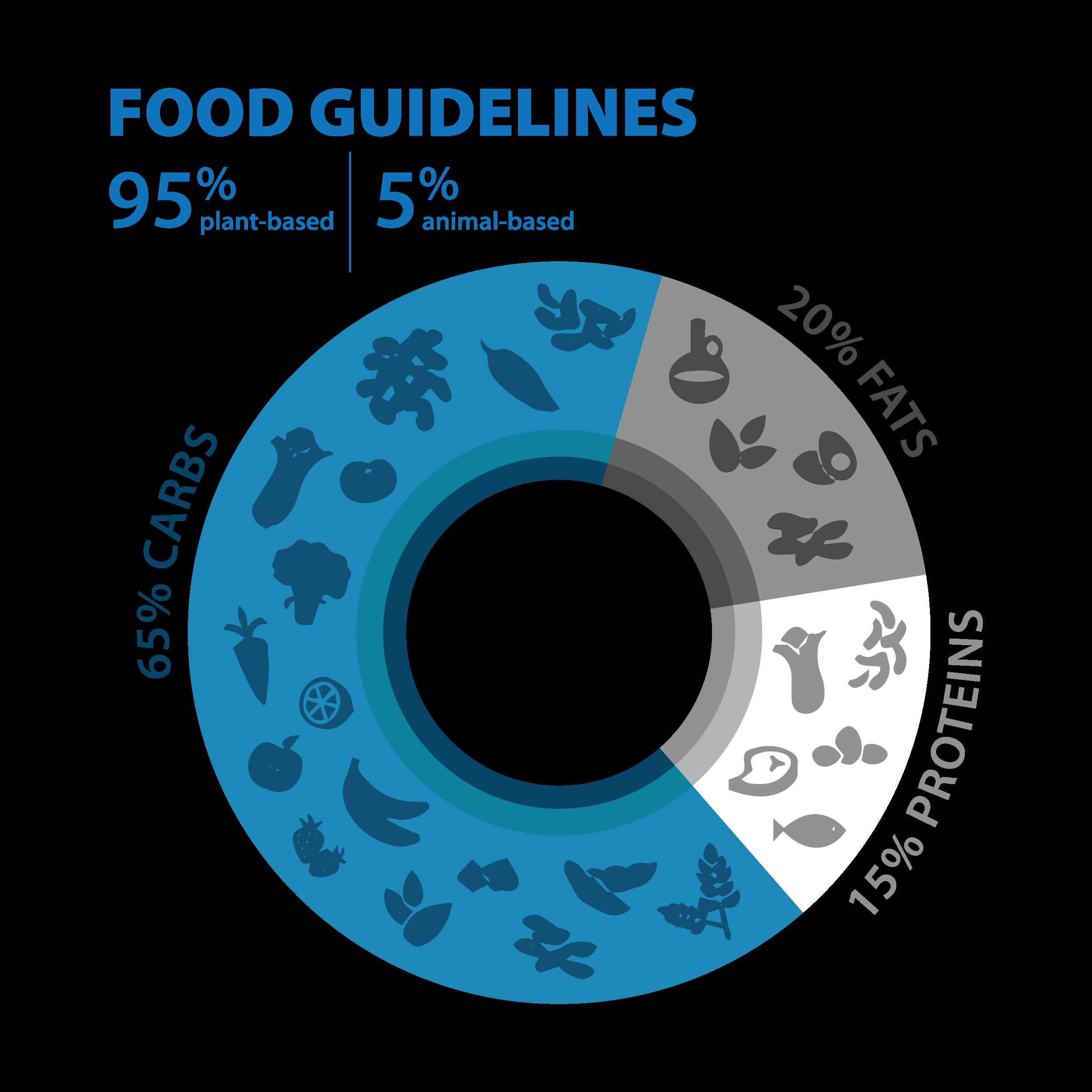 food-guidelines