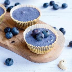 mini-blueberry-cheesecakes