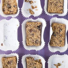 peanut-butter-and-cranberry-protein-bars_1_18717638763_o-540x660