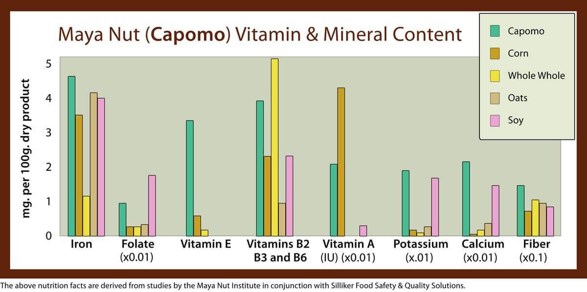 maya-nut-nutrition