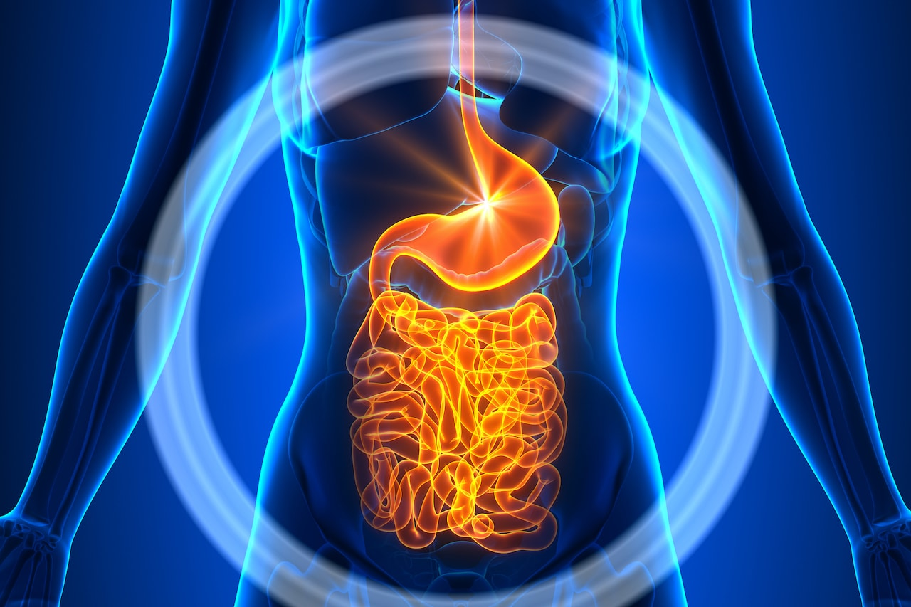 A Healthy Gut Microbiome Could Help Prevent Severe COVID-19