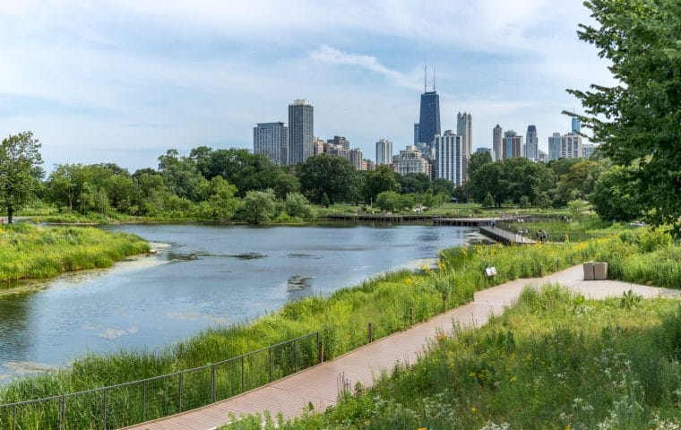 Pond at Chicago's Lincoln park