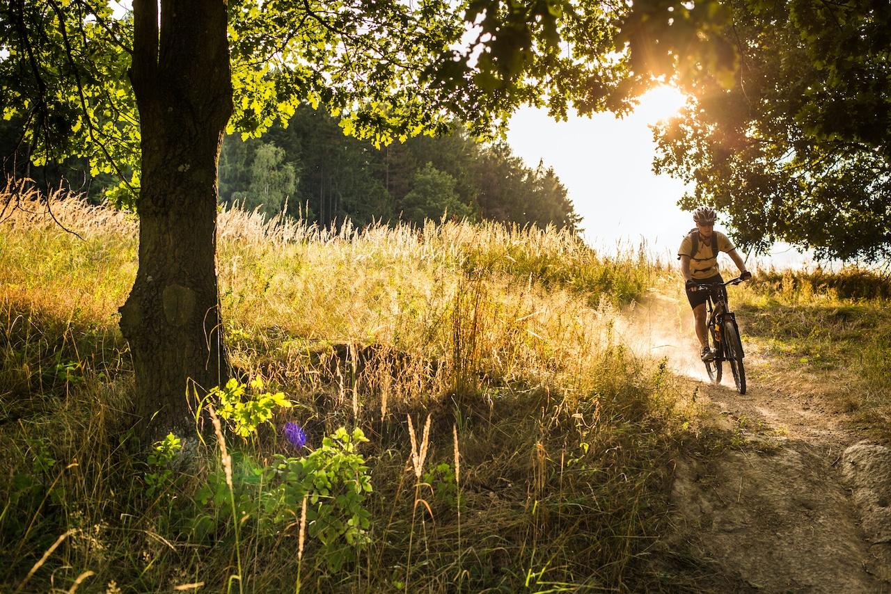 biker in woods exercise