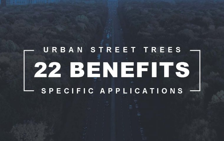 Pages from Trees In Cities Keep Us Healthy
