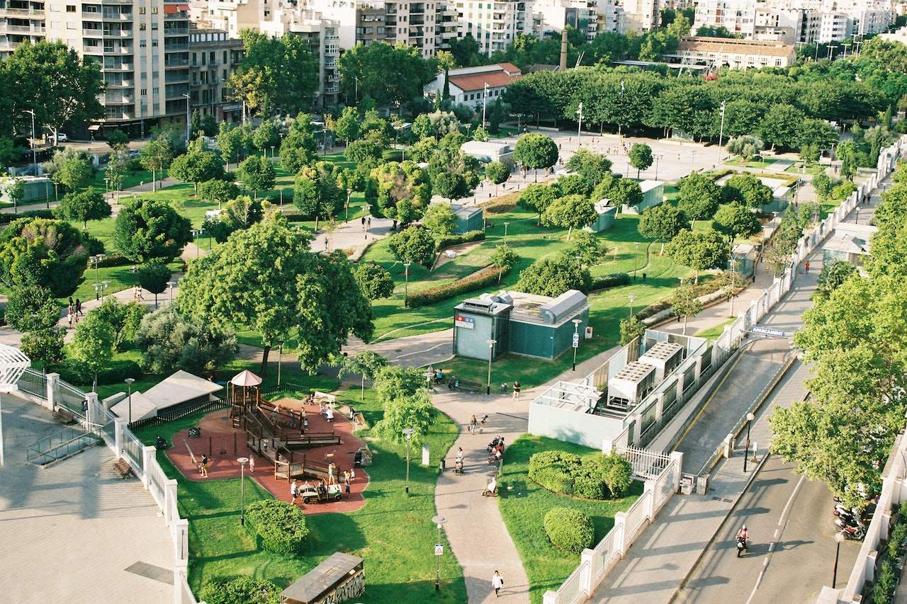 green city park rewilding
